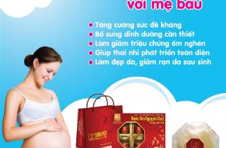 Mẹ bầu có nên sử dụng yến sào?