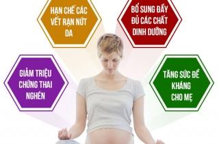 Mẹ bầu ăn yến sào trong thai kì Lợi hay Hại?